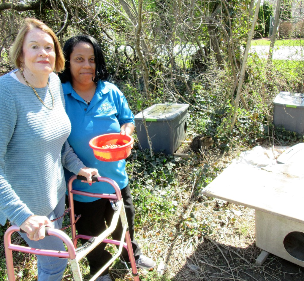 Pictured left to right are Londonderry on the Tred Avon resident Sheila Wheeler with Londonderry employee Gail Graham. The two women have been committed to caring for a feral cat population on Port Street in Easton.